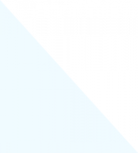 video img shape 272x300 - video_img_shape